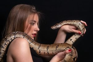 Do Snakes Recognize Their Owners?