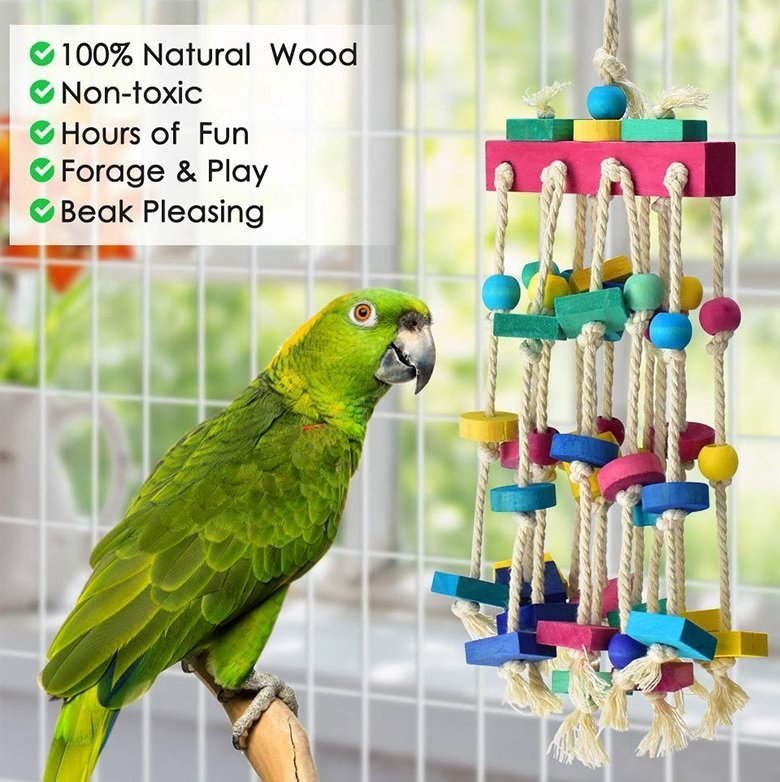 How To Select Safe Toys For Birds?