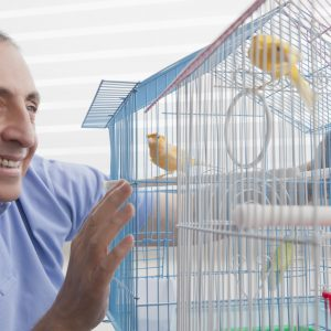 Preparing And Bringing Home Your New Bird