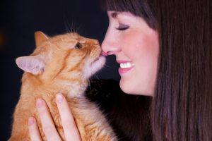 Why Do Kittens Want To Be Near Your Face?