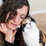 Can Cats Sense Pain in Humans? Amazing Facts!