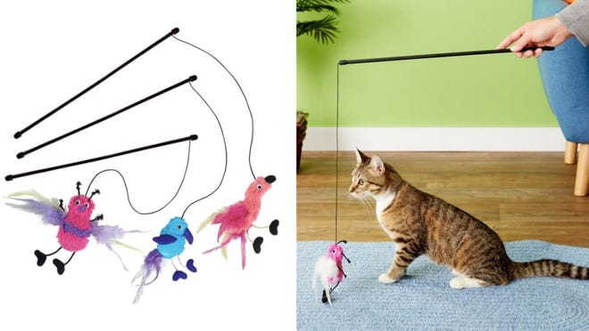 Play with attractive toys with your cat