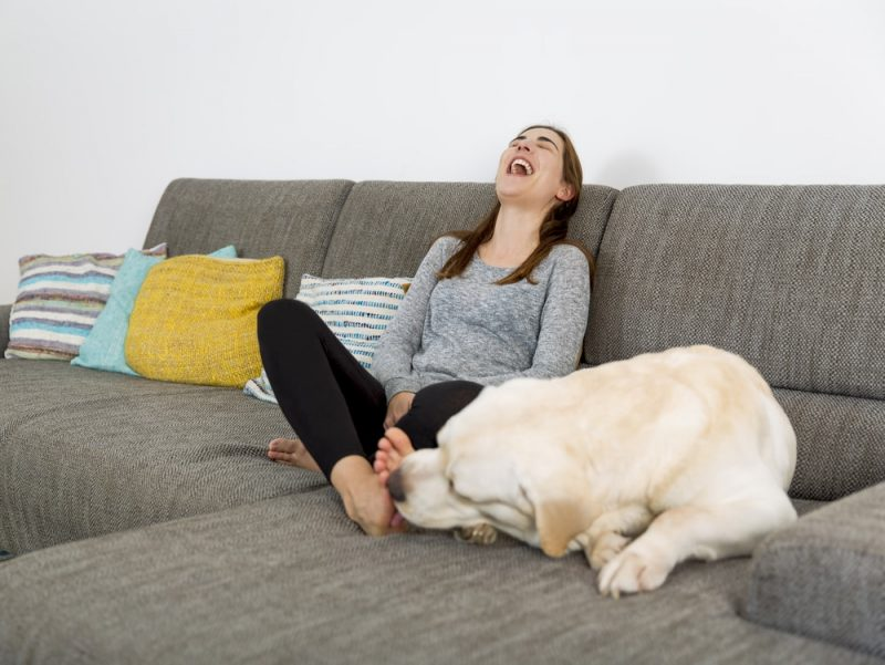 Can My Dog Get Sick From Licking My Feet?